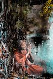 Старая индийская дама стоковое изображение