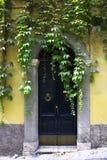 Старая итальянская винтажная дверь в Риме, Италии Стоковое Фото