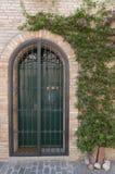 Старая итальянская деревня, дверь и цветок Стоковые Изображения