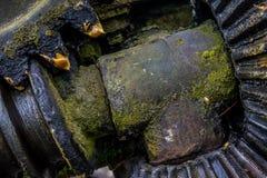 Старая и ржавая шестерня в солнечном свете Стоковое Изображение RF