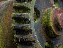 Старая и ржавая шестерня в солнечном свете Стоковое Изображение