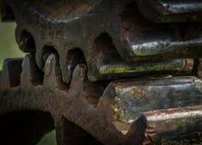 Старая и ржавая шестерня в солнечном свете Стоковое Фото
