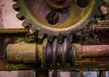 Старая и ржавая шестерня в солнечности Стоковая Фотография RF