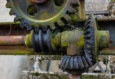 Старая и ржавая шестерня в солнечности Стоковая Фотография