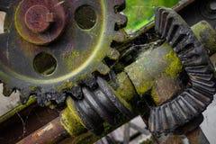 Старая и ржавая шестерня в солнечности Стоковые Фото