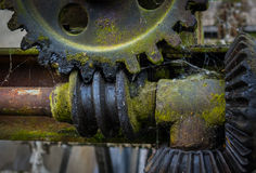 Старая и ржавая шестерня в солнечности Стоковые Изображения RF