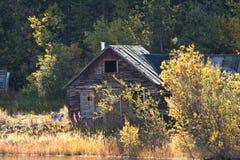 Старая кабина горнорабочих, Carcross Стоковые Изображения