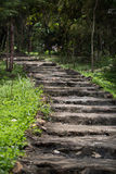 Старая каменная лестница в лесе Стоковые Фото