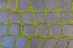 Старая каменная картина пола с зеленой травой как текстура или backg Стоковое Фото