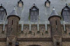 Старая каменная крыша Дворец Binnenhof Голландия Стоковое фото RF