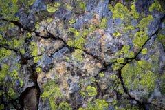 Старая каменная поверхность Стоковая Фотография RF