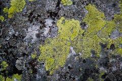 Старая каменная поверхность Стоковое фото RF