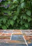 Старая каменная пустая поверхность таблицы на предпосылке зеленых кустов плодоовощ Стоковое фото RF