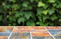 Старая каменная пустая поверхность таблицы на предпосылке зеленых кустов плодоовощ Стоковое Изображение RF