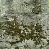 старая каменная стена текстуры Серая каменная поверхность Стоковая Фотография