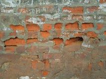 Старая кирпичная кладка: оранжевые кирпичи в середине зеленого кроша гипсолита Стоковое Фото