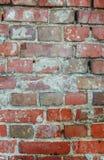 старая кирпичная стена в дне на улице Стоковая Фотография