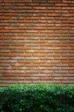 Старая кирпичная стена с предпосылкой зеленой травы Стоковые Изображения RF