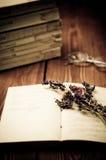 Старая книга открытая Стоковые Фотографии RF