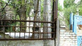 Старая конкретная загородка индустриальной зоны с ржавой решеткой металла видеоматериал