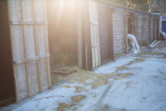 Старая конюшня лошади Стоковое Изображение