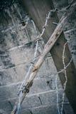 Старая колючая проволока ржавчины с бетоном Стоковое Изображение RF