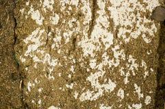 Старая краска на стене Стоковое Фото
