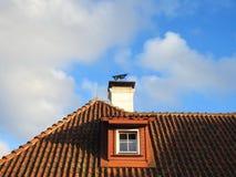 Старая крыша дома, Латвия Стоковое фото RF