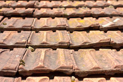 Старая крыша Стоковое Фото