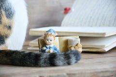 Старая кукла изюминки с кабелем дневника и кота Стоковые Изображения RF