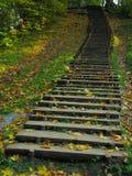 старая лестница деревянная Стоковое Фото