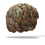 старая мозга людская иллюстрация вектора