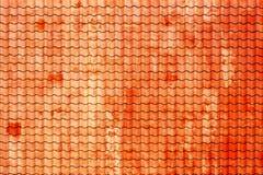 Старая обесцвеченная крыша плиток Стоковая Фотография RF
