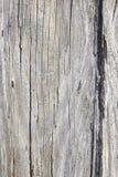 Старая огорченная древесина Стоковое Фото