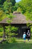старая дома японская Стоковые Фотографии RF