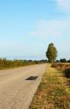 Старая дорога асфальта к деревне Стоковая Фотография RF