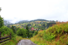 Старая дорога к горе Стоковые Изображения RF