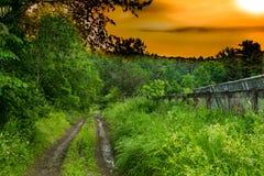 Старая дорога фермы Стоковые Фото