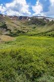 Старая дорога Fall River - национальный парк Колорадо скалистой горы Стоковые Изображения RF