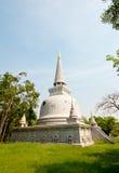 Старая пагода Стоковые Фото
