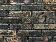 Старая пакостная фотография черни кирпичной стены Стоковые Фото