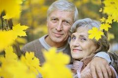 старая пар счастливая Стоковое Изображение
