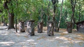 Старая пасека Под открытым небом музей Pirogovo Стоковое Изображение