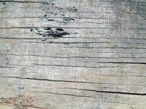 старая поверхностная древесина Стоковое Фото