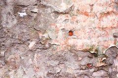 старая поверхность Загубленный гипсолит Стоковые Фото