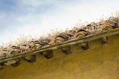 Старая покинутая крыша Стоковое фото RF