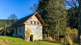 Старая покинутая мельница колеса воды в Словении Стоковое Фото