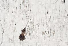 старая покрашенная белая древесина Стоковая Фотография