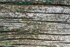 Старая покрашенная деревянная планка Стоковая Фотография