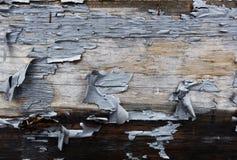 старая покрашенная стена Стоковые Фотографии RF